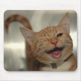 Winking Happy Ginger Cat Mouse Pad