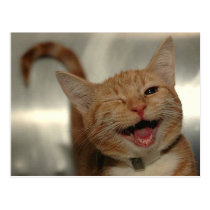 Winking Happy Ginger Cat Postcard