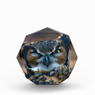 Winking Owl Award