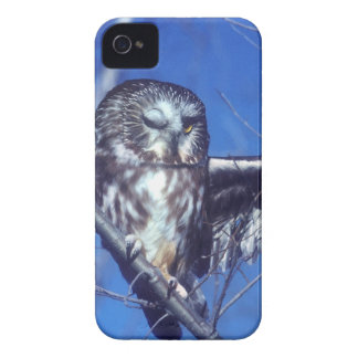 Winking owl iPhone 4 case