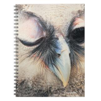 Winking Owl Notebook