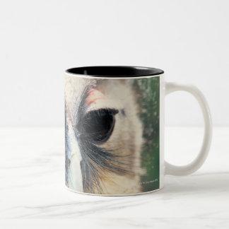 Winking Owl Two-Tone Coffee Mug