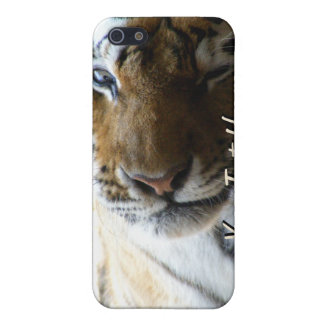 Winking Tiger Case For iPhone SE/5/5s