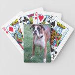 Winnie el boxeador barajas de cartas