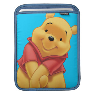 Winnie the Pooh 13 Sleeves For iPads