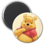 Winnie the Pooh 8 Refrigerator Magnets