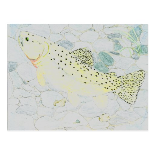 Winning Art By E. Boulter Grade 9 Postcard