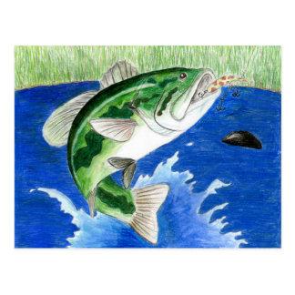 Winning art by  J. Compy - Grade 8 Postcard