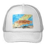 Winning Art By J. Metz Grade 6 Hat