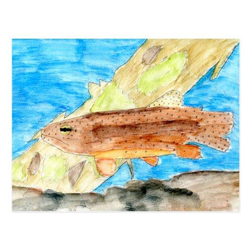 Winning Art By J. Metz Grade 6 Post Card