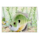 Winning art by  J. Pesik - Grade 12 Greeting Card