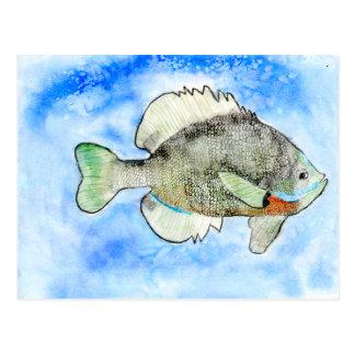 Winning art by  J. Seres - Grade 4 Postcard