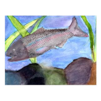 Winning art by  K. VonScheerSchmidt - Grade 5 Postcard