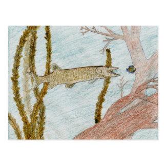 Winning Art By W. Stout Grade 9 Postcard