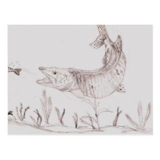 Winning artwork by A. Smith, Grade 6 Postcard