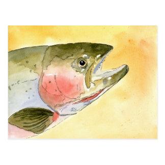 Winning artwork by C. Collingsworth, Grade 5 Postcard