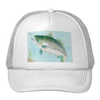 Winning artwork by E. Vance, Grade 8 Trucker Hat
