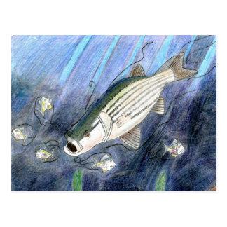 Winning artwork by K. Dumont, Grade 6 Postcard