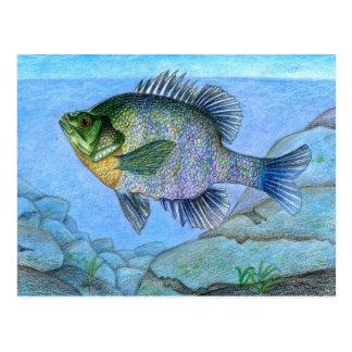 Winning artwork by L. Luan, Grade 7 Postcard