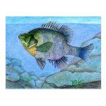 Winning artwork by L. Luan, Grade 7 Postcards