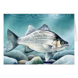 Winning artwork by Z. Bowels, Grade 12 Card