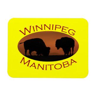 Winnipeg Rectangular Photo Magnet