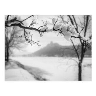 Winona MN Postcard: Sugarloaf with Frosty Branch Postcard