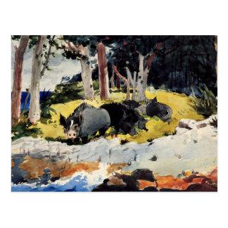 Winslow Homer - Bermuda Settlers Postcard