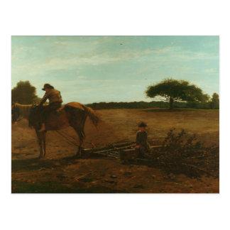 Winslow Homer - The Brush Harrow Postcard