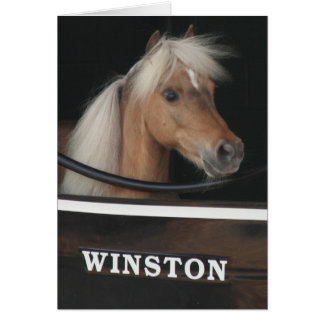 Winston at Churchill Downs Card