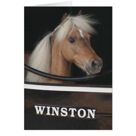 Winston at Churchill Downs Card