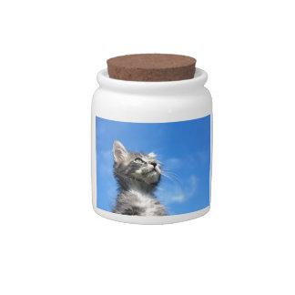 Winston el gato del aviador del Tabby Jarras Para Caramelos