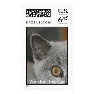 Winston The Cat Postage