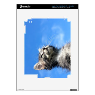 Winston the Tabby Aviator Cat Decals For iPad 3