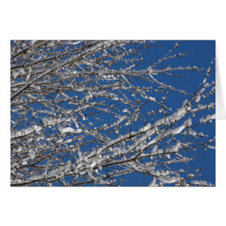 Winter ~ 19 card