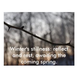 Winter.2009.031, Winter's stillness: reflect an... Postcard