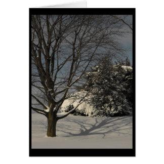 Winter ~ 23.5 card