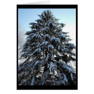 Winter ~ 3 card
