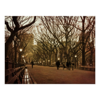 Winter Afternoon Central Park Print