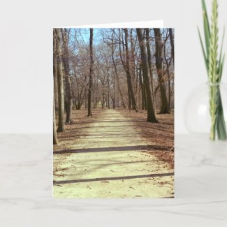 Winter Afternoon Greeting Card card