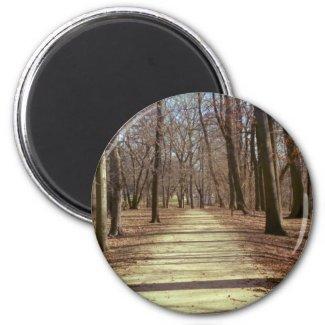 Winter Afternoon Magnet magnet