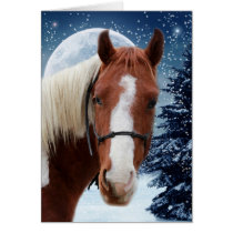 Winter American Paint Horse Card