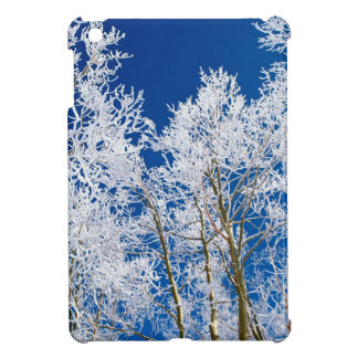 Winter An Everclear Afternoon iPad Mini Cover