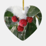 winter and red fruits ornaments