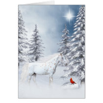 Winter appaloosa card