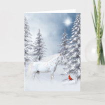 Winter appaloosa holiday card