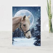 Winter Arabian #1 Holiday Card