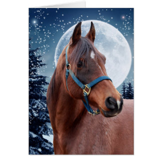 Winter Arabian #3 Card