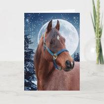 Winter Arabian #3 Holiday Card