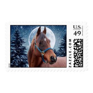 Winter Arabian #3 Postage